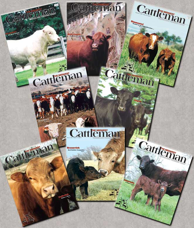 The Midwest Cattleman is your direct line to thousands of Cattlemen and potential Customers in the heart of America's Cattle industry.